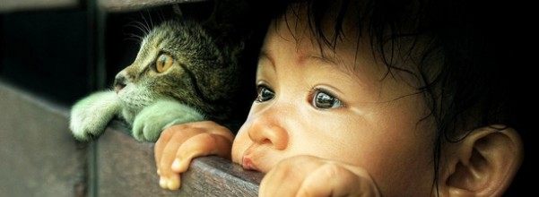 baby and cat Nicknames that make great baby names
